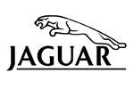 capas para automóveis jaguar
